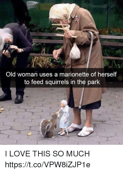 Funny, Love, and Old Woman: Old woman uses a marionette of herself  to feed squirrels in the park I LOVE THIS SO MUCH https://t.co/VPW8iZJP1e