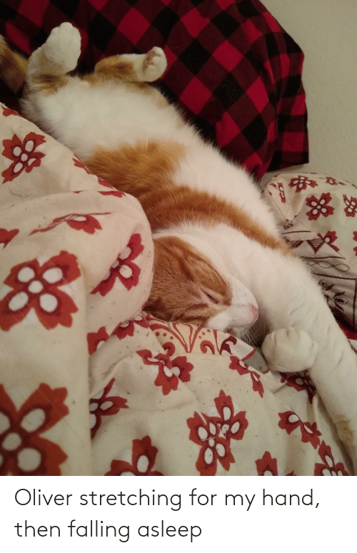 For, Hand, and Then: Oliver stretching for my hand, then falling asleep