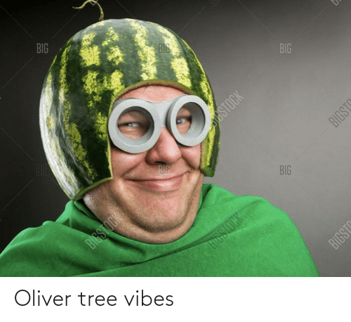 Tree, Vibes, and Oliver: Oliver tree vibes