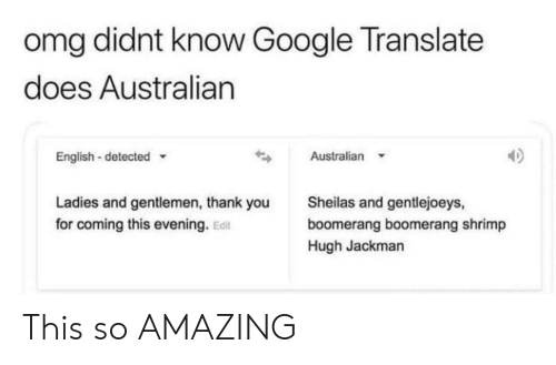 Didnt Know Google Translate Does