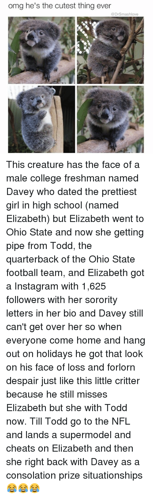 Memes, Nfl, and Ohio State Football: omg he's the cutest thing ever  @DrSmashlove This creature has the face of a male college freshman named Davey who dated the prettiest girl in high school (named Elizabeth) but Elizabeth went to Ohio State and now she getting pipe from Todd, the quarterback of the Ohio State football team, and Elizabeth got a Instagram with 1,625 followers with her sorority letters in her bio and Davey still can't get over her so when everyone come home and hang out on holidays he got that look on his face of loss and forlorn despair just like this little critter because he still misses Elizabeth but she with Todd now. Till Todd go to the NFL and lands a supermodel and cheats on Elizabeth and then she right back with Davey as a consolation prize situationships 😂😂😂