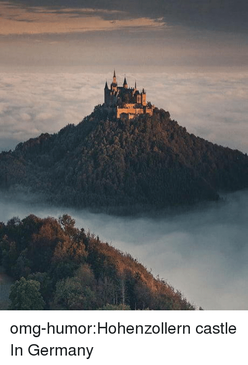 Omg, Tumblr, and Blog: omg-humor:Hohenzollern castle In Germany