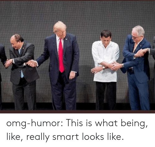 Omg, Tumblr, and Blog: omg-humor:  This is what being, like, really smart looks like.