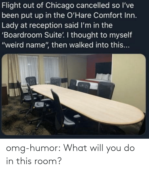 Omg, Tumblr, and Blog: omg-humor:  What will you do in this room?