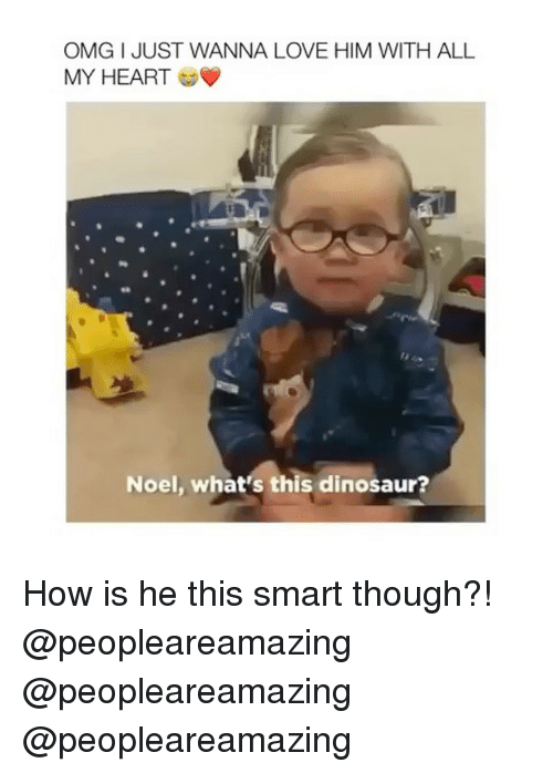 Dinosaur, Love, and Memes: OMG I JUST WANNA LOVE HIM WITH ALL  MY HEART  Noel, what's this dinosaur? How is he this smart though?! @peopleareamazing @peopleareamazing @peopleareamazing