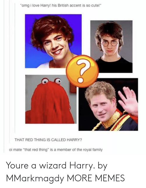 """Cute, Dank, and Family: omg i love Harry! his British accent is so cute!  THAT RED THING IS CALLED HARRY?  ol mate """"that red thing"""" is a member of the royal family Youre a wizard Harry. by MMarkmagdy MORE MEMES"""