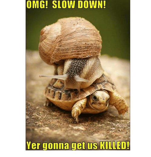 Memes, Omg, and 🤖: OMG! SLOW DOWN!  Yer gonna get us KILLED!