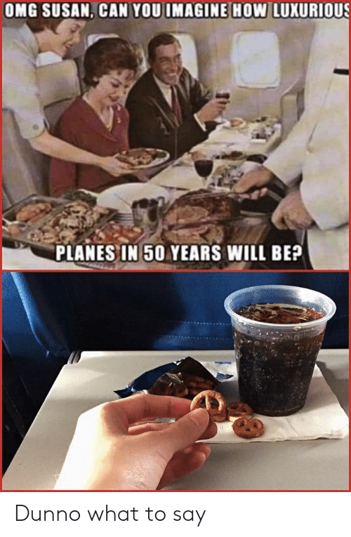 Omg, How, and Planes: OMG SUSAN, CAN YOU IMAGINE HOw LUXURIOUS  PLANES IN 50 YEARS WILL BE? Dunno what to say