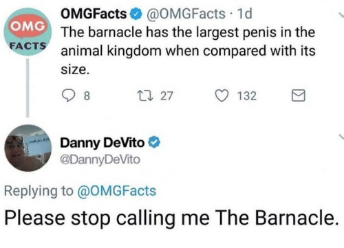 Facts, Omg, and Animal: OMGFacts@OMGFacts 1d  The barnacle has the largest penis in the  OMG  FACTS animal kingdom when compared with its  size.  t 27 132  Danny DeVito  @DannyDeVito  Replying to @OMGFacts  Please stop calling me The Barnacle.