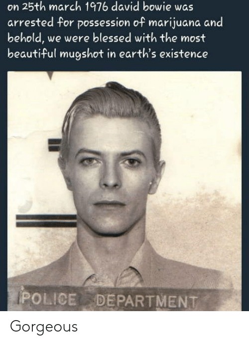 Beautiful, Blessed, and David Bowie: on 25th march 1976 david bowie was  arrested for possession of marijuana and  behold, we were blessed with the most  beautiful mugshot in earth's existence  POLICE DEPARTMENT Gorgeous