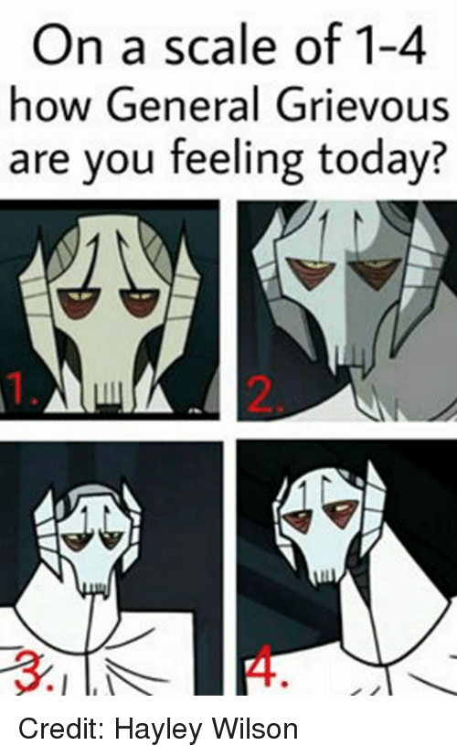 Star Wars, Generalization, and General Grievous: On a scale of 1-4  how General Grievous  are you feeling today? Credit: Hayley Wilson