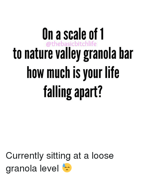 On A Scale Of 1 Othe Basic Bitchlife To Nature Valley Granola Bar