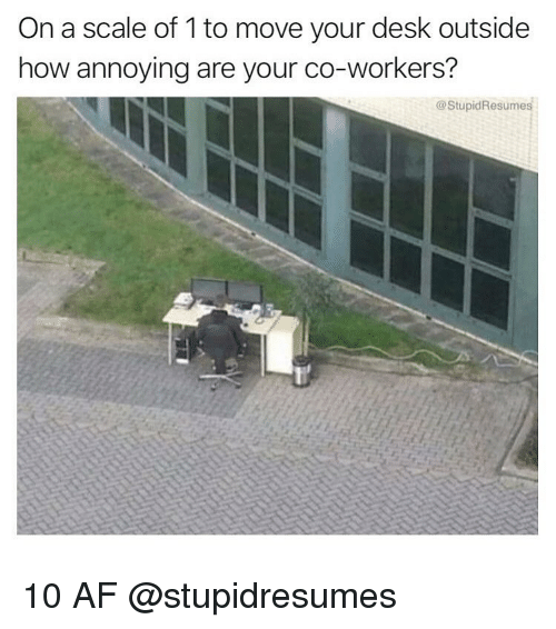 Af, Memes, and Desk: On a scale of 1 to move your desk outside  how annoying are your co-workers?  @StupidResumes 10 AF @stupidresumes