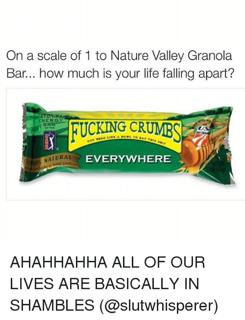 On A Scale Of 1 To Nature Valley Granola Bar How Much Is Your Life