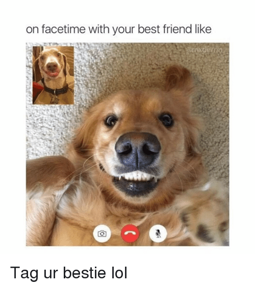 Best Friend, Facetime, and Funny: on facetime with your best friend like Tag ur bestie lol