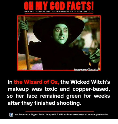 on my god facts www omg facts online com i fb com o m 14301332 ✅ 25 best memes about wizard of oz wizard of oz memes