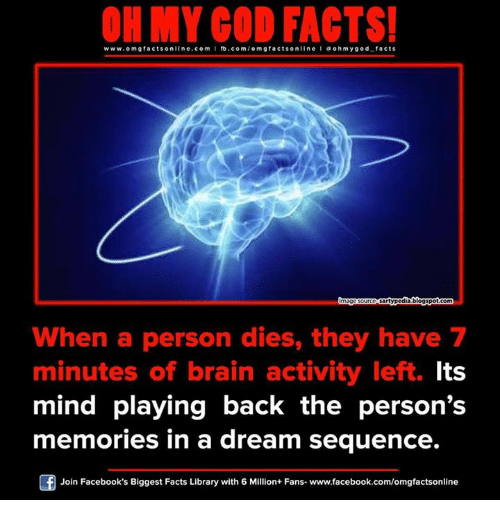 A Dream, Memes, and 🤖: ON MY GOD FACTS!  www.omg facts online.com I fb.com  omg facts on  I a oh y god facts  sartypodiablogspotcom  When a person dies, they have 7  minutes of brain activity left. Its  mind playing back the person's  memories in a dream sequence.  Join Facebook's Biggest Facts Library with 6 Million+ Fans. www.facebook.com/omgfactsonline