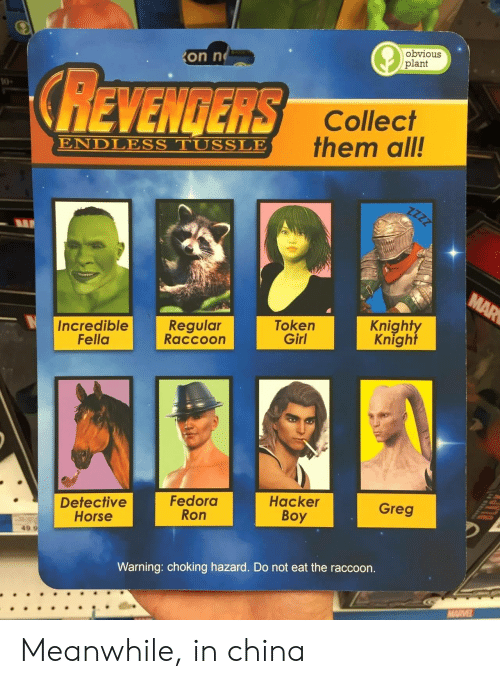 Fedora, China, and Girl: on n  obvious  plant  REVENGERS  10  Collect  them all!  ENDLESS TUSSLE  Incredible  Fella  Regular  Raccoon  Token  Girl  Knight  Knight  Detective  Horse  Fedora  Ron  Hacker  Boy  Greg  49.9  Warning: choking hazard. Do not eat the raccoon. Meanwhile, in china