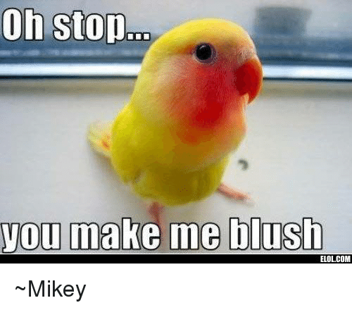 on stop you make me blush elolcom ~mikey 4530675 on stop you make me blush elolcom ~mikey meme on me me