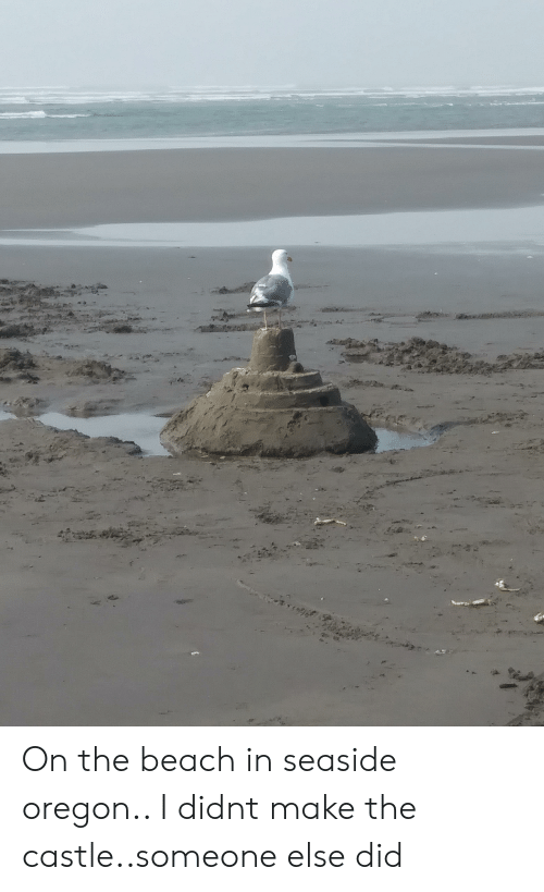 Beach, Oregon, and The Castle: On the beach in seaside oregon.. I didnt make the castle..someone else did