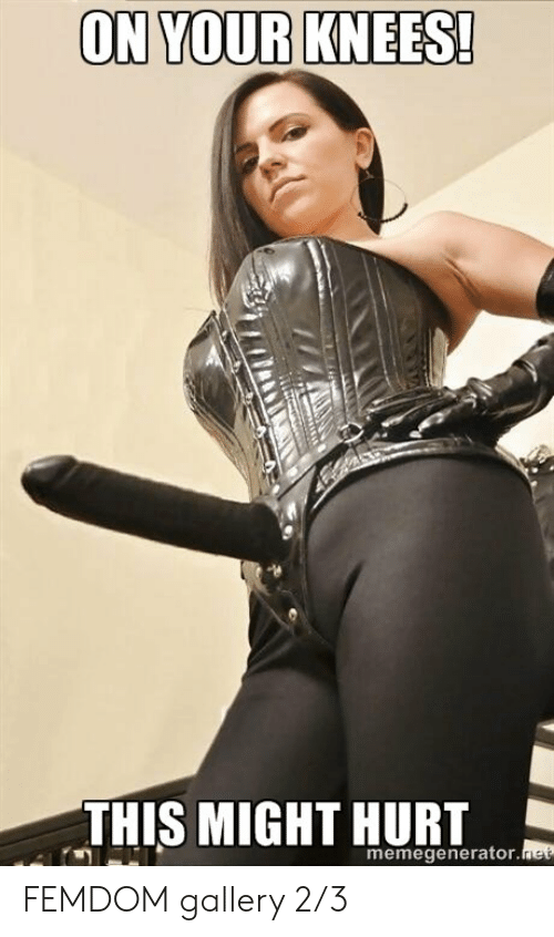 apologise, but, femdom ballbusting slave necessary words... super, magnificent