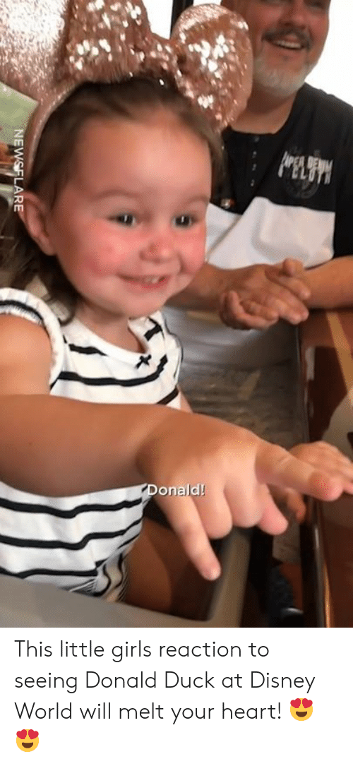Dank, Disney, and Disney World: onald! This little girls reaction to seeing Donald Duck at Disney World will melt your heart! 😍😍