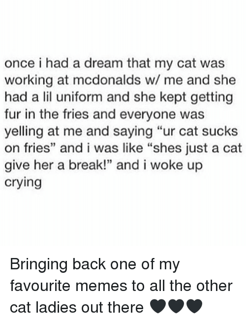 "A Dream, Crying, and McDonalds: once i had a dream that my cat was  working at mcdonalds w/ me and she  had a lil uniform and she kept getting  fur in the fries and everyone was  yelling at me and saying ""ur cat sucks  on fries"" and i was like ""shes just a cat  give her a break!"" and i woke up  crying Bringing back one of my favourite memes to all the other cat ladies out there 🖤🖤🖤"