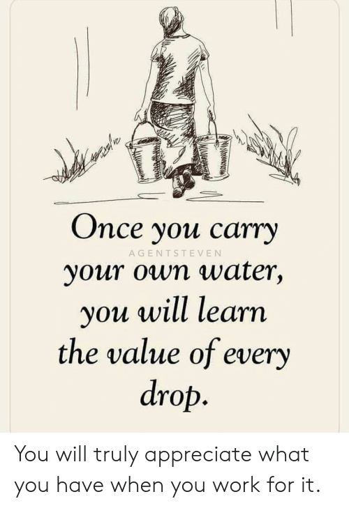 Memes, Work, and Appreciate: Once you ca  rry  AGENTSTEVEN  your own water,  ou will learn  the value of every  drop You will truly appreciate what you have when you work for it.