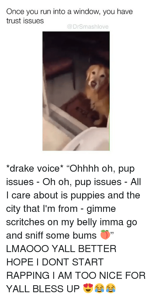"""Bless Up, Drake, and Memes: Once you run into a window, you have  trust issues  @ DrSmashlove *drake voice* """"Ohhhh oh, pup issues - Oh oh, pup issues - All I care about is puppies and the city that I'm from - gimme scritches on my belly imma go and sniff some bums 🍑"""" LMAOOO YALL BETTER HOPE I DONT START RAPPING I AM TOO NICE FOR YALL BLESS UP 😍😂😂"""