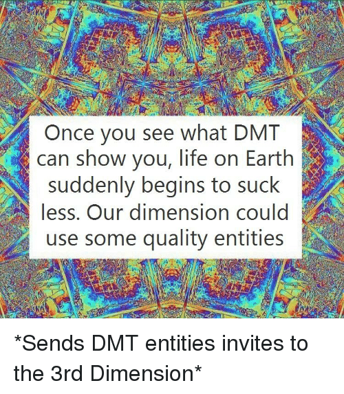 Once You See What DMT Can Show You Life on Earth Suddenly