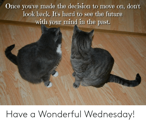 Future, Memes, and Wednesday: Once youve made the decision to move on, don't  look back. Its hard to see the future  with your mind in the past. Have a Wonderful Wednesday!