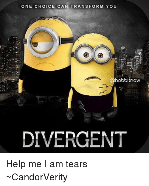 Memes, Divergent, and Help: ONE CHOICE CAN TRANSFORM YOU  hobbitnow  DIVERGENT Help me I am tears  ~CandorVerity