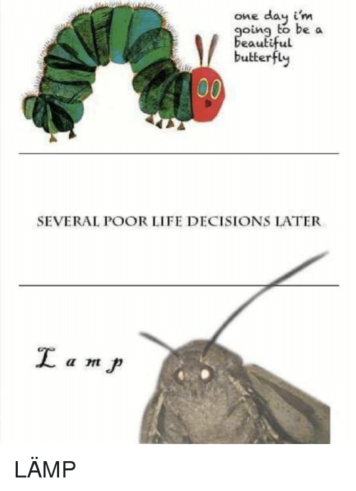 Life, Butterfly, and Decisions: one day i'm  oing to be a  eauti  ful  butterfly  SEVERAL POOR LIFE DECISIONS LATER LÄMP