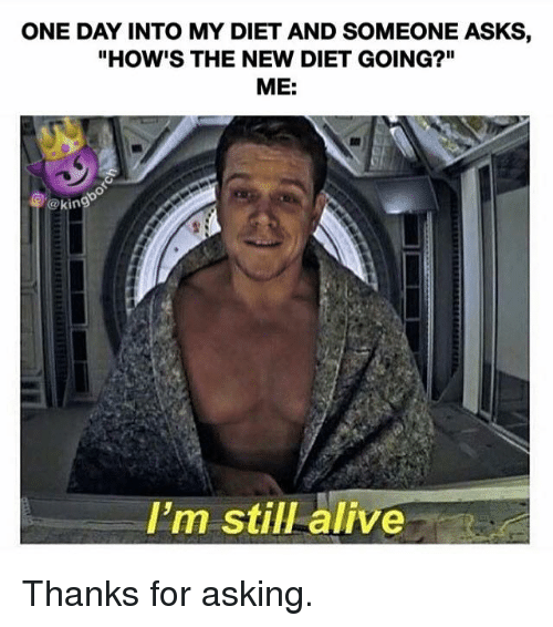 diet memes one day