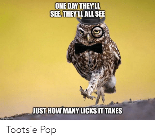 ONE DAY THEY LL SEE THEYLL ALL SEE JUST HOW MANY LICKS IT