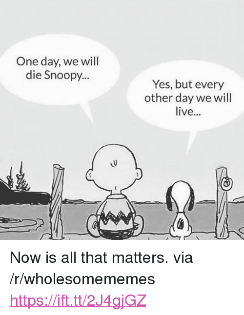 "Live, Snoopy, and All That: One day, we will  die Snoopy...  Yes, but every  other day we will  live... <p>Now is all that matters. via /r/wholesomememes <a href=""https://ift.tt/2J4gjGZ"">https://ift.tt/2J4gjGZ</a></p>"