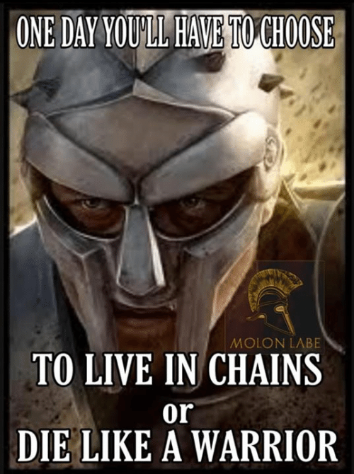 Memes, Live, and 🤖: ONE DAY YOULL HAVE TO CHOOSE  MOLON LABE  TO LIVE IN CHAINS  or  DIE LIKE A WARRIOR