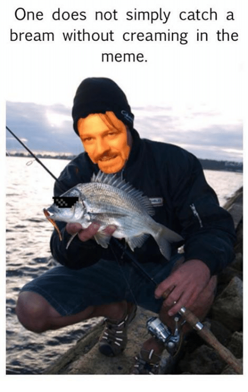 one does not simply catch a bream without creaming in 4445848 ✅ 25 best memes about one does not simply meme generator one