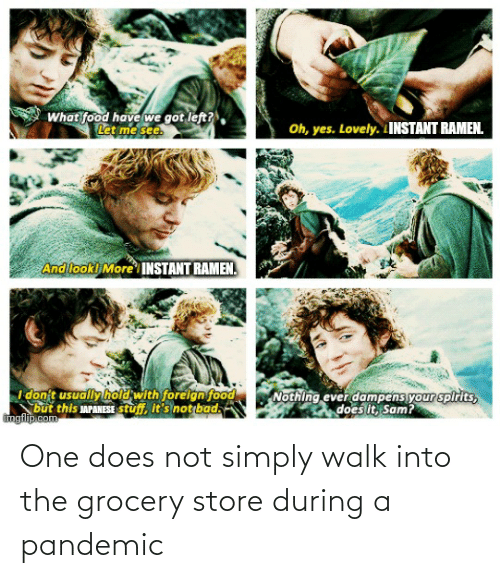 Lord of the Rings, One, and Pandemic: One does not simply walk into the grocery store during a pandemic