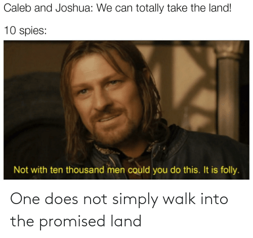 One, Promised Land, and One Does Not Simply: One does not simply walk into the promised land