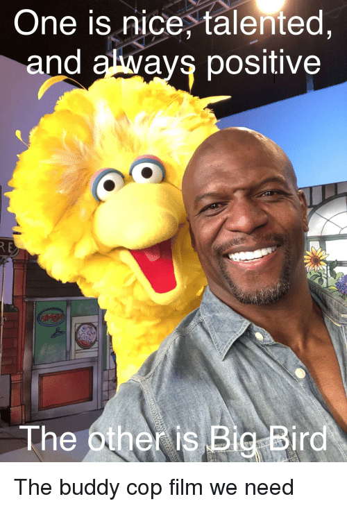 Big Bird, Film, and Nice: One is nice, talented,  and akways positive  The other is Big Bird
