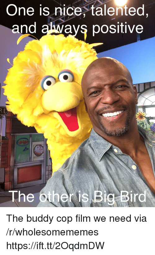 Big Bird, Film, and Nice: One is nice, talented  and always positive  The other is Big Bird The buddy cop film we need via /r/wholesomememes https://ift.tt/2OqdmDW