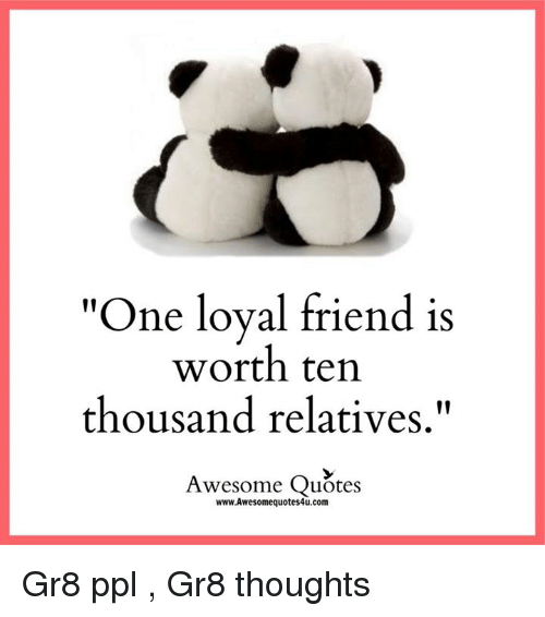 Panda Quotes Best ✅ 25 Best Memes About Awesome Quotes  Awesome Quotes Memes