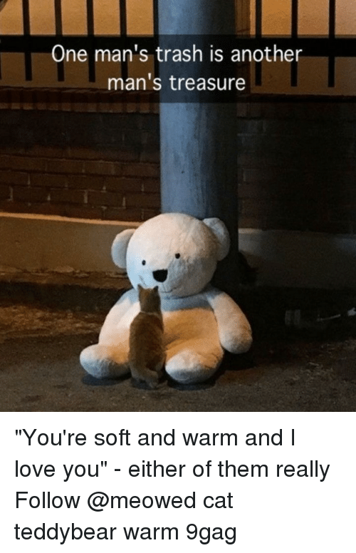 """9gag, Love, and Memes: One man's trash is another  man's treasure """"You're soft and warm and I love you"""" - either of them really⠀ Follow @meowed cat teddybear warm 9gag"""