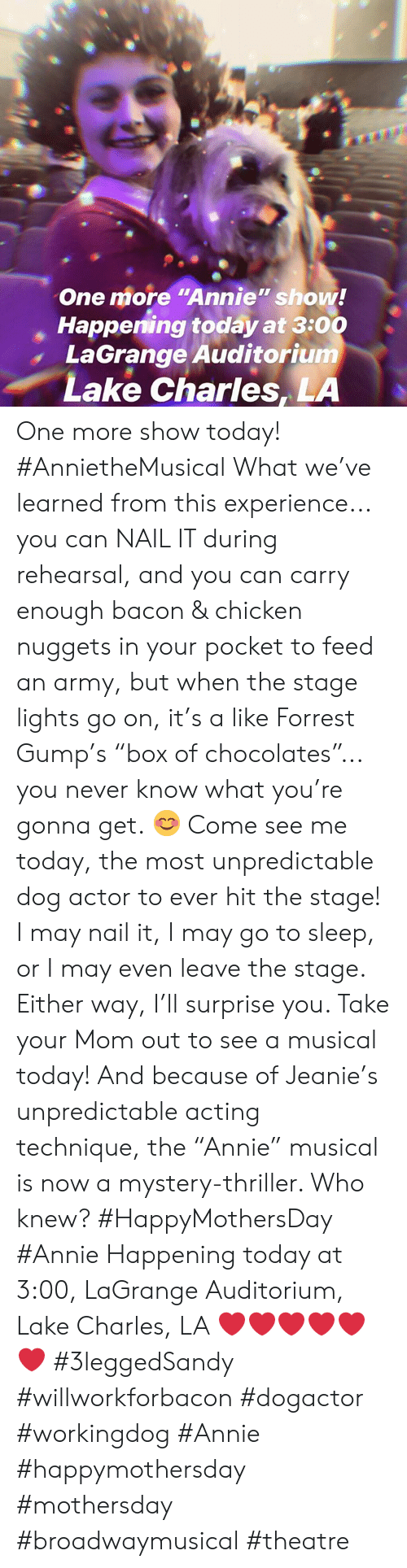 "Forrest Gump, Go to Sleep, and Memes: One more ""Annie"" show!  Happening today at 3:00  LaGrange Auditorium  Lake Charles, LA One more show today! #AnnietheMusical  What we've learned from this experience... you can NAIL IT during rehearsal, and you can carry enough bacon & chicken nuggets in your pocket to feed an army, but when the stage lights go on, it's a like Forrest Gump's ""box of chocolates""... you never know what you're gonna get. 😊   Come see me today, the most unpredictable dog actor to ever hit the stage! I may nail it, I may go to sleep, or I may even leave the stage.  Either way, I'll surprise you.  Take your Mom out to see a musical today! And because of Jeanie's unpredictable acting technique, the ""Annie"" musical is now a mystery-thriller. Who knew?  #HappyMothersDay #Annie  Happening today at 3:00, LaGrange Auditorium, Lake Charles, LA   ❤️❤️❤️❤️❤️❤️  #3leggedSandy #willworkforbacon #dogactor #workingdog #Annie #happymothersday #mothersday #broadwaymusical #theatre"