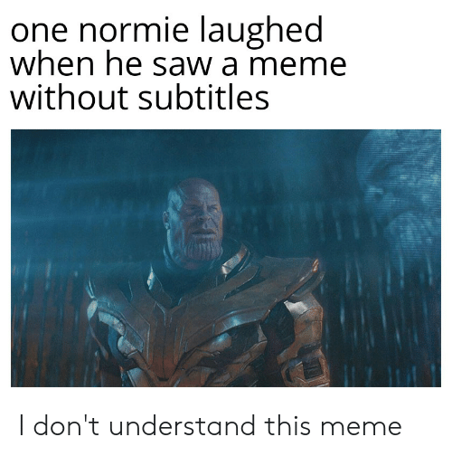 One Normie Laughed When He Saw a Meme Without Subtitles I