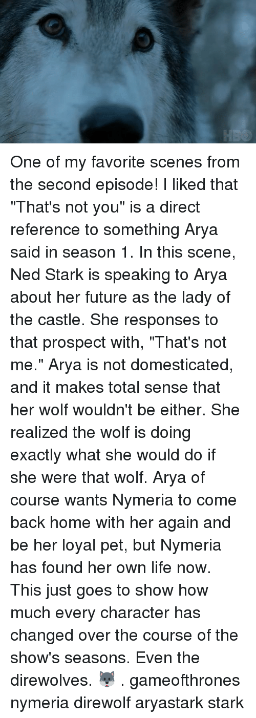 """Future, Life, and Memes: One of my favorite scenes from the second episode! I liked that """"That's not you"""" is a direct reference to something Arya said in season 1. In this scene, Ned Stark is speaking to Arya about her future as the lady of the castle. She responses to that prospect with, """"That's not me."""" Arya is not domesticated, and it makes total sense that her wolf wouldn't be either. She realized the wolf is doing exactly what she would do if she were that wolf. Arya of course wants Nymeria to come back home with her again and be her loyal pet, but Nymeria has found her own life now. This just goes to show how much every character has changed over the course of the show's seasons. Even the direwolves. 🐺 . gameofthrones nymeria direwolf aryastark stark"""