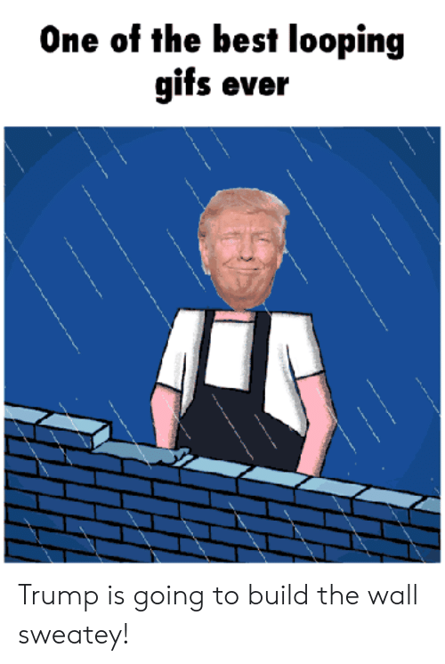 One of the Best Looping Gifs Ever Trump Is Going to Build