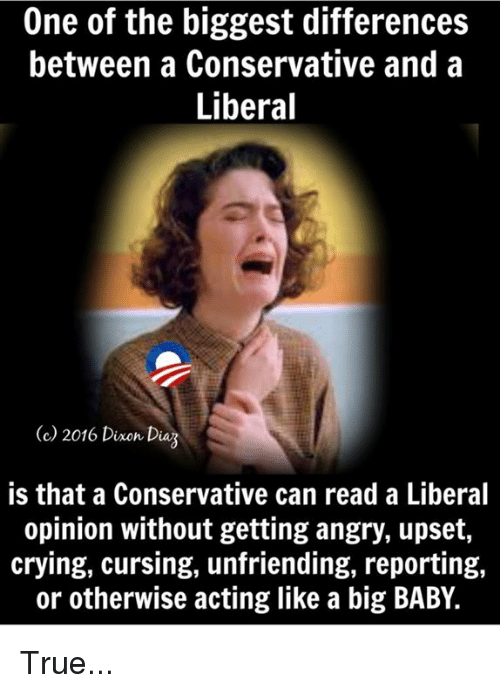Crying, Memes, and True: One of the biggest differences  between a Conservative and a  Liberal  (c 2016 Dinon Daz  is that a Conservative can read a Liberal  opinion without getting angry, upset,  crying, cursing, unfriending, reporting,  or otherwise acting like a big BABY. True...