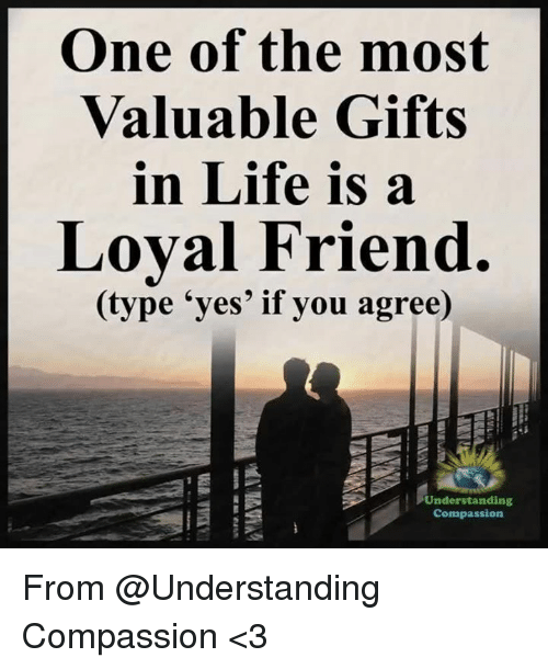 Life, Memes, and Compassion: One of the most  Valuable Gifts  in Life is a  Loval Friend.  (type 'yes' if you agree)  Understanding  Compassion From @Understanding Compassion <3